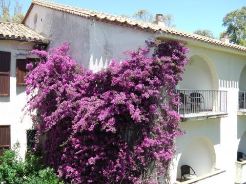 Villa Plutoni is een top accommodatie in Sardinië.