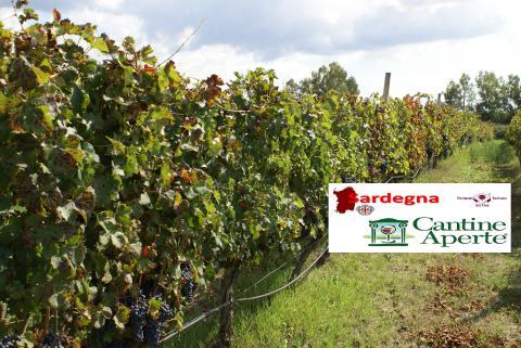 Sardinie wijntoerisme  - Cantine Aperte